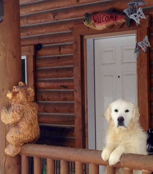 Alaska's Dudley Britagne